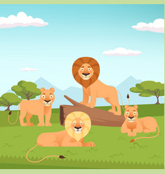 lion pride landscape wild fur animal hunters vector image