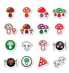 mushroom icons set vector image