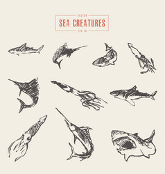 set realistic sea creatures drawn sketch vector image