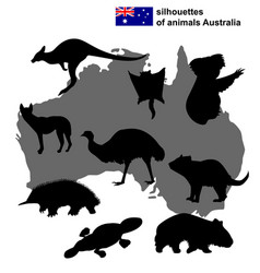 silhouettes of animals australia vector image
