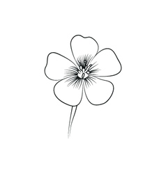 Wildflowers simple black lined icon on white vector