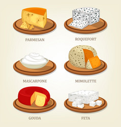 roquefort and parmesan mimolette and gouda feta vector image vector image