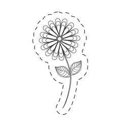 flower spring season cut line vector image