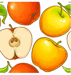 apple fruit pattern on white background vector image