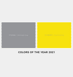colors year 2021 ultimate grey and vibrant vector image