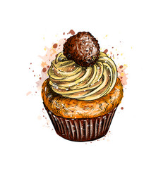 cupcake with cream vector image