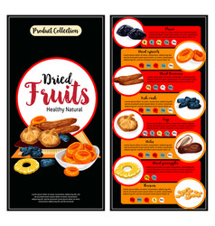 Dried fruit superfood nutrition facts banner set vector