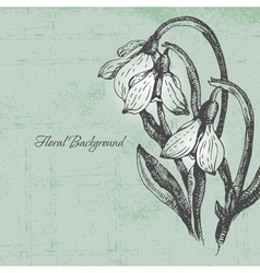 Floral background with snowdrop in retro style vector image