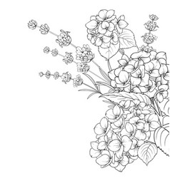 floral garland lavender and hydrangea isolated vector image