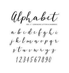 hand drawn alphabet script font isolated vector image