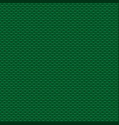 knitted green pattern vector image