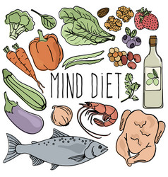 Mind diet healthy nutrition brain vector