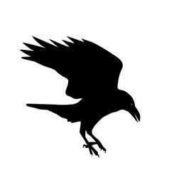 Silhouette a raven vector