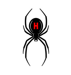 Spider black widow red black bug spider 3d vector