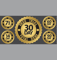 30 Day Free Trial Badge vector image