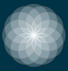 Flower of life sacred geometry vector
