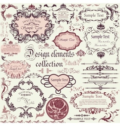set of calligraphic design elements and floral vector image