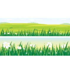 summer panorama vector image vector image