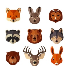 Animal portrait flat icon set vector