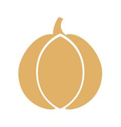 garlic fresh vegetable icon vector image