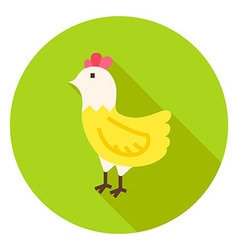 Hen Circle Icon with long Shadow vector