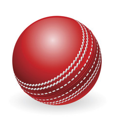 shiny red traditional cricket ball vector image vector image