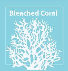 Bleached coral trendy color 2020 vector