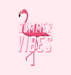 flamingo summer vibes vector image
