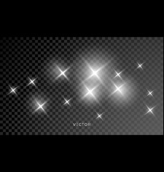 shine glows and star light sparks lens flare vector image