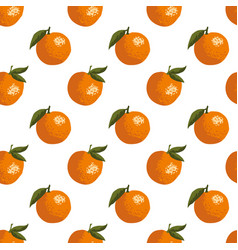 summer pattern with oranges seamless texture vector image