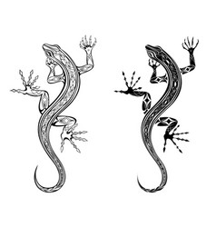 two lizards vector image