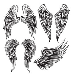 Wings bird feather black white tattoo set 13 vector
