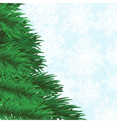 christmas tree branch and snowflakes background vector image