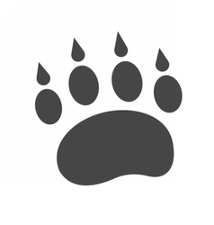 Bear Footprint Icon vector