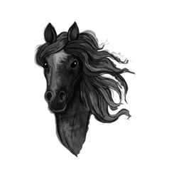 Black noble raven mustang portrait vector