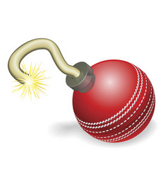 cricket ball bomb concept vector image