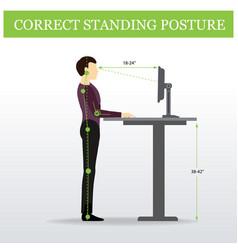 Ergonomic correct standing posture and height vector