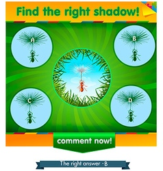Find right shadow ant vector