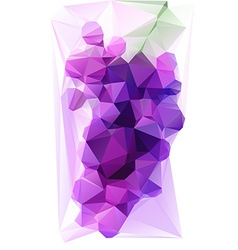 Triangulated Purple Grape vector