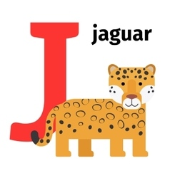 English animals zoo alphabet letter J vector image vector image