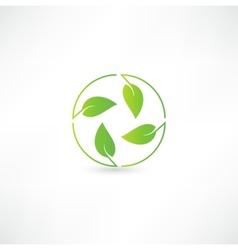 Leaf nature icon vector image vector image