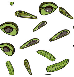 cucumber and avocado seamless pattern vector image