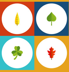 Flat icon leaves set of hickory leaf maple and vector