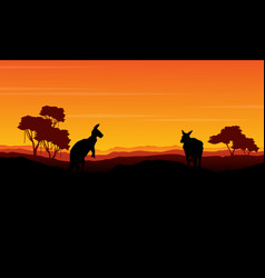 Landscape kangaroo silhouette at the sunset vector