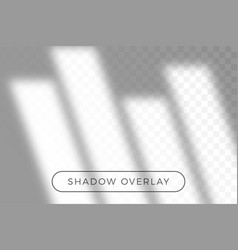 overlay shadow natural lighting in realism vector image