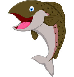 salmon fish cartoon vector image vector image