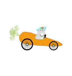 Bunny driving carrot vector
