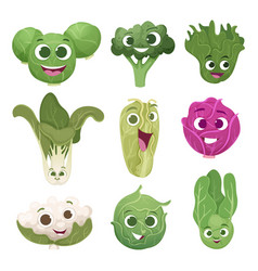 cabbage characters vegetable comic persons vector image