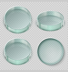 empty glass petri dish biology lab dishes vector image
