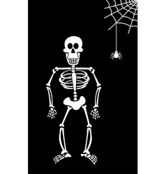 Halloween skeleton on black background vector